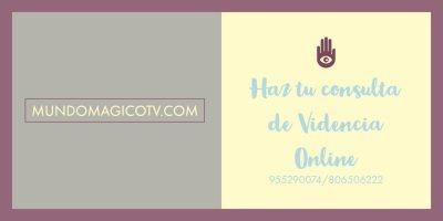 videncia online