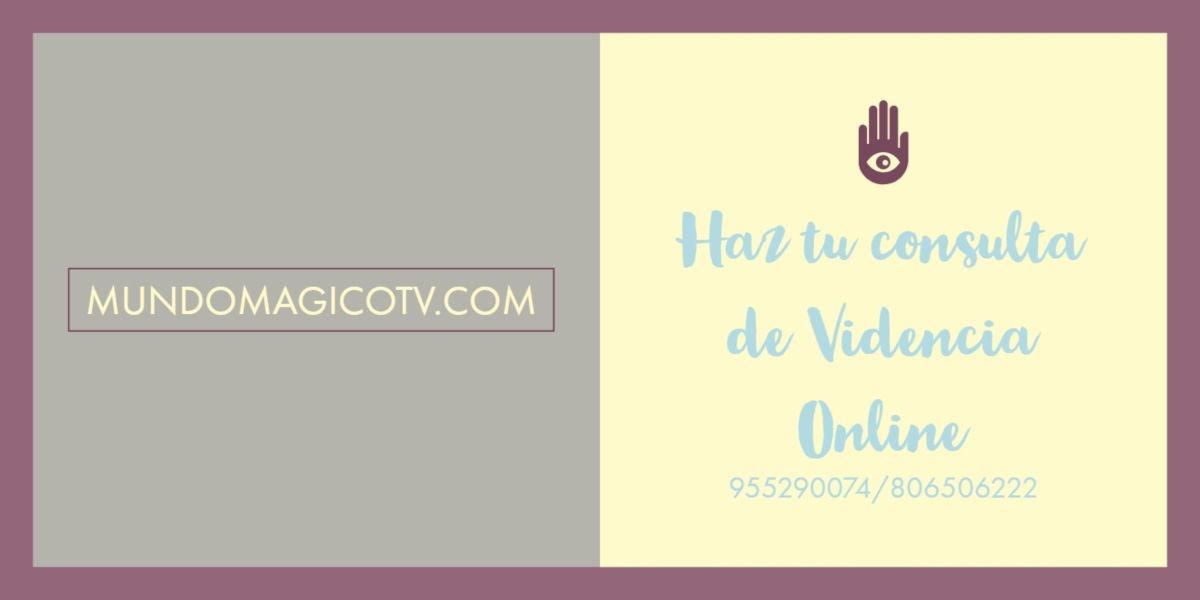 videncia-online