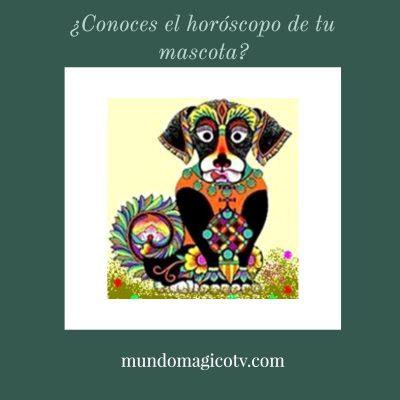 horoscopo mascotas