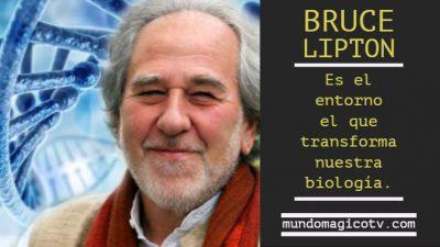 Bruce Lipton