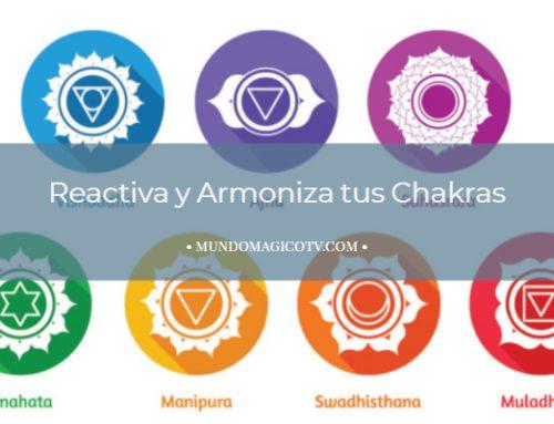 Ejercicio para reactivar los 7 Chakras Principales